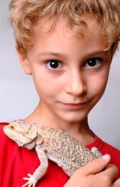 Băiat cu animale de companie dragon bărbos lui